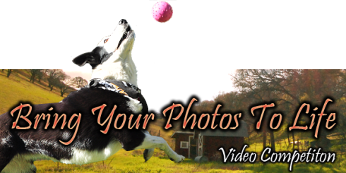 Bring Your Photos To Life Banner